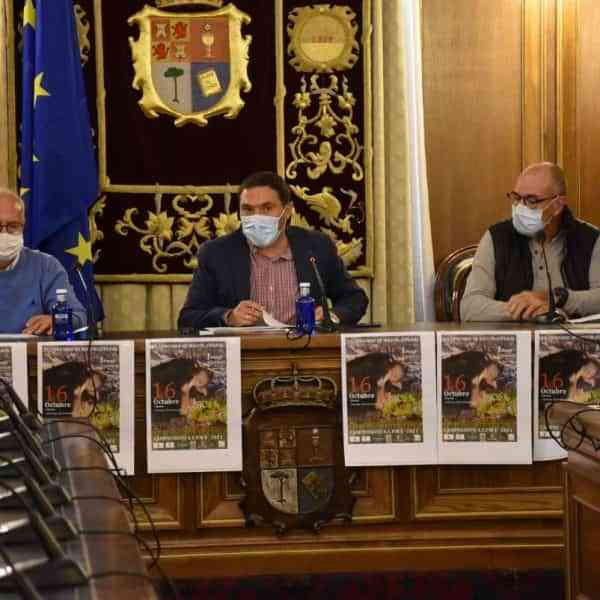 VII Concurso Nacional de Mastín Español este 16 de octubre en Fuentenava de Jábaga Cuenca